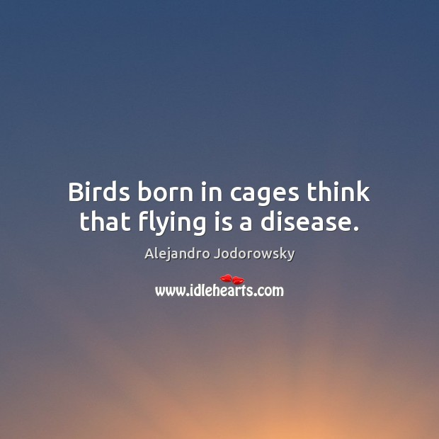 Birds born in cages think that flying is a disease. Image