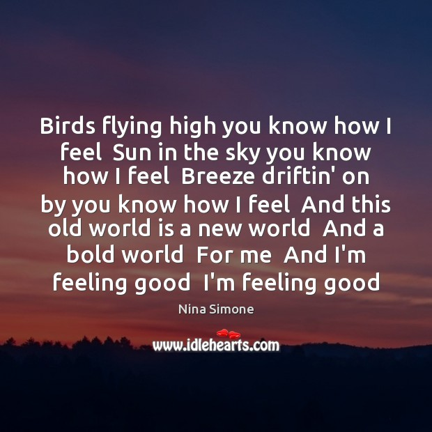 Birds flying high you know how I feel  Sun in the sky Nina Simone Picture Quote