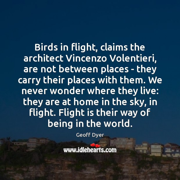 Birds in flight, claims the architect Vincenzo Volentieri, are not between places Image