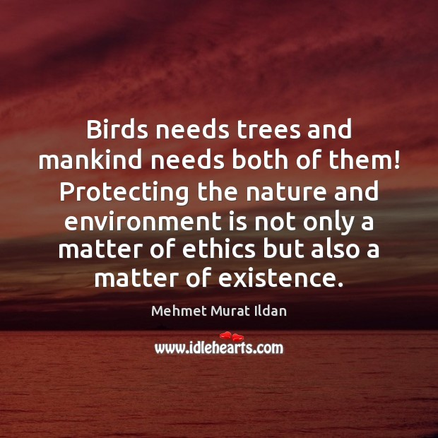 Image, Birds needs trees and mankind needs both of them! Protecting the nature