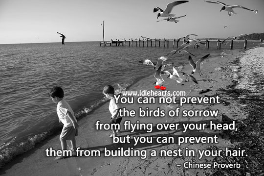 You Can Not Prevent the Birds of Sorrow From Flying Over.