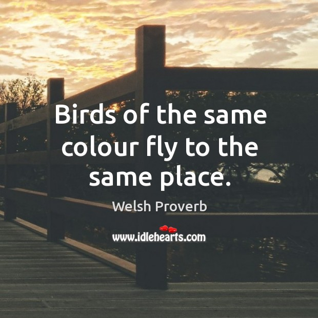 Birds of the same colour fly to the same place. Welsh Proverbs Image