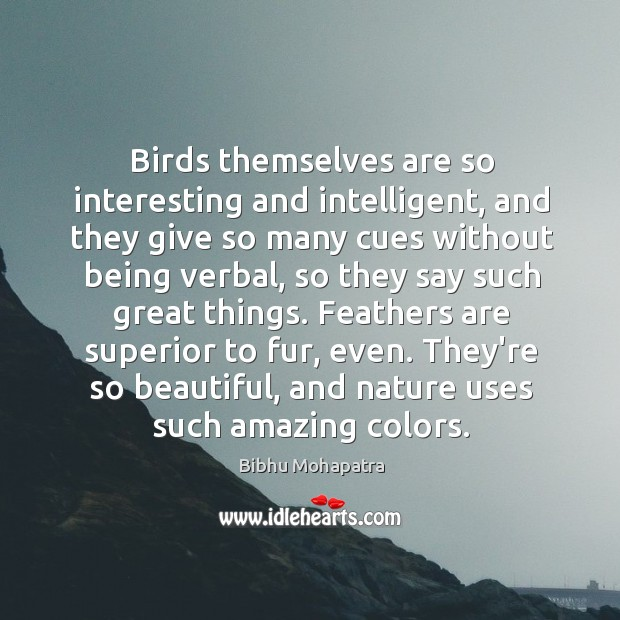 Image, Birds themselves are so interesting and intelligent, and they give so many