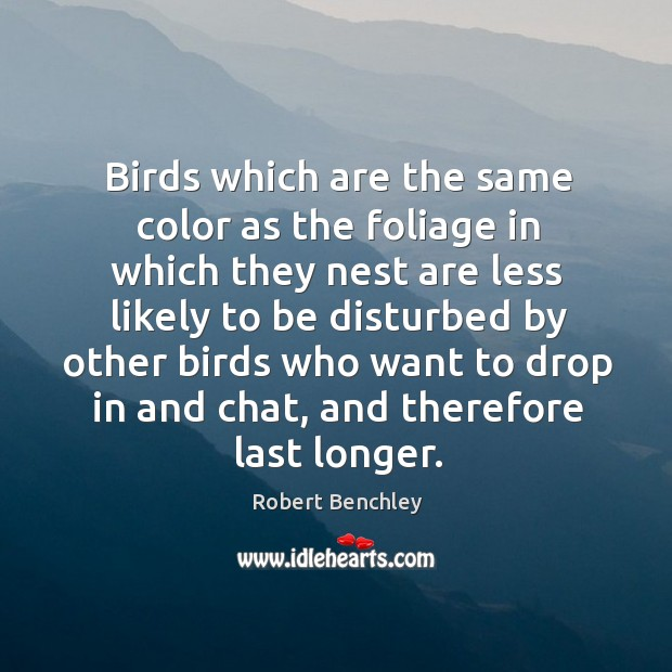 Image, Birds which are the same color as the foliage in which they