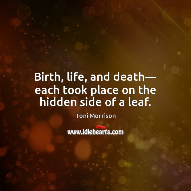 Birth, life, and death― each took place on the hidden side of a leaf. Toni Morrison Picture Quote