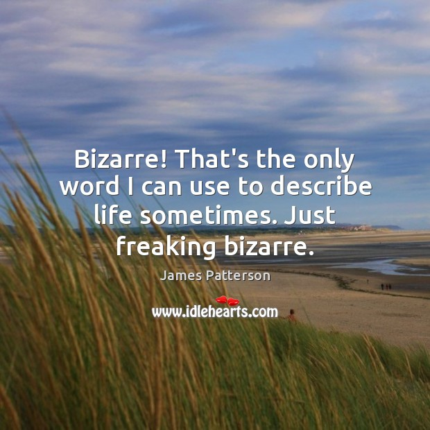 Bizarre! That's the only word I can use to describe life sometimes. Just freaking bizarre. Image