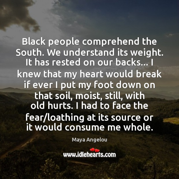 Image, Black people comprehend the South. We understand its weight. It has rested