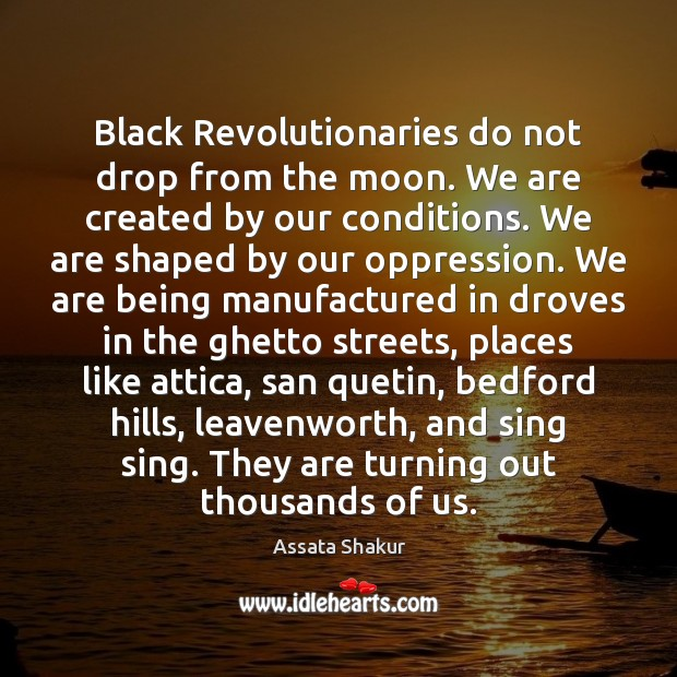 Black Revolutionaries do not drop from the moon. We are created by Assata Shakur Picture Quote