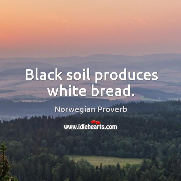 Black soil produces white bread. Norwegian Proverbs Image