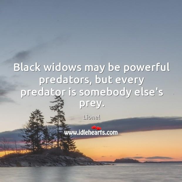 Black widows may be powerful predators, but every predator is somebody else's prey. Image