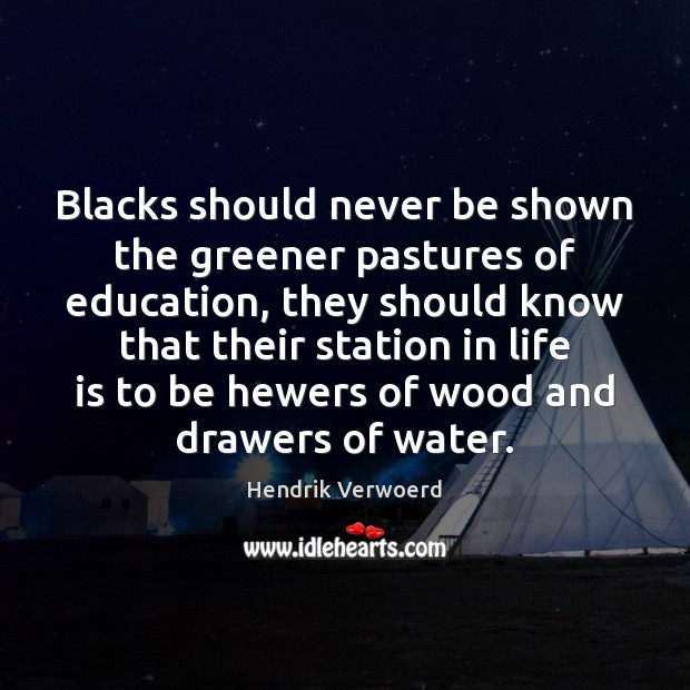 Blacks should never be shown the greener pastures of education, they should Image