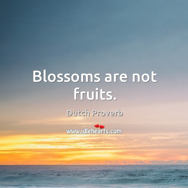 Blossoms are not fruits. Dutch Proverbs Image