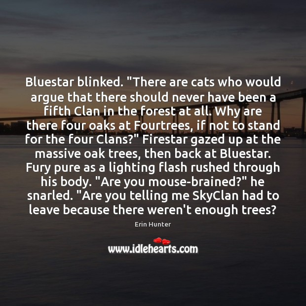 "Bluestar blinked. ""There are cats who would argue that there should never Erin Hunter Picture Quote"