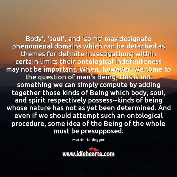 Body', 'soul', and 'spirit' may designate phenomenal domains which can be detached Martin Heidegger Picture Quote