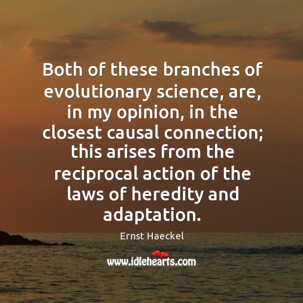 Image, Both of these branches of evolutionary science, are, in my opinion, in the closest causal