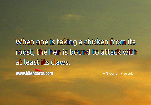 When one is taking a chicken from its roost, the hen is bound to attack with at least its claws. Nigerian Proverbs Image