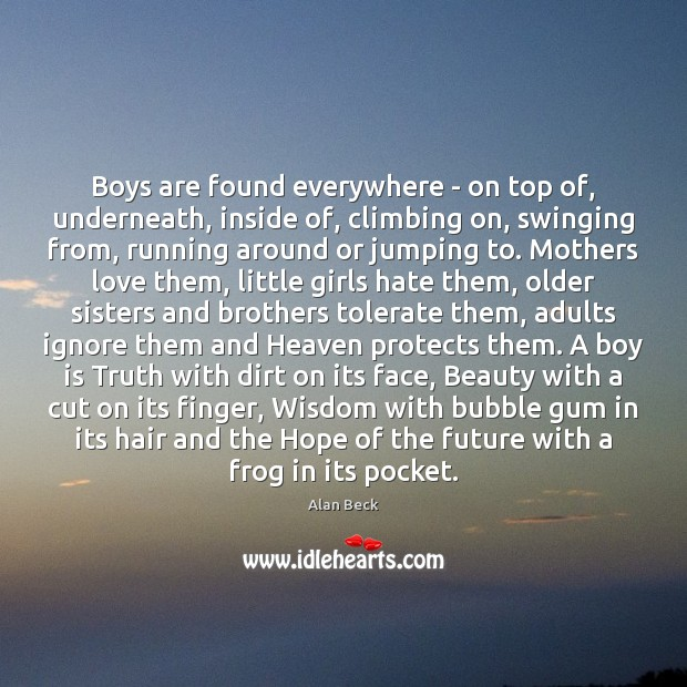 Boys are found everywhere – on top of, underneath, inside of, climbing Image