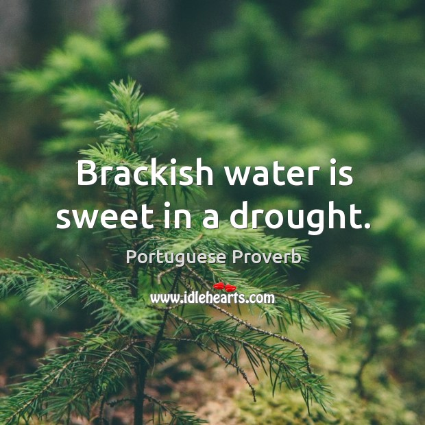 Brackish water is sweet in a drought. Portuguese Proverbs Image