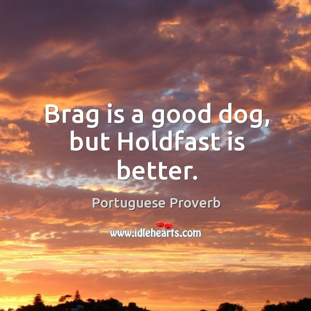 Brag is a good dog, but holdfast is better. Portuguese Proverbs Image