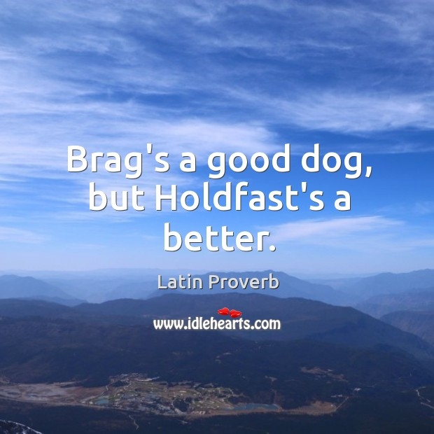 Brag's a good dog, but holdfast's a better. Latin Proverbs Image