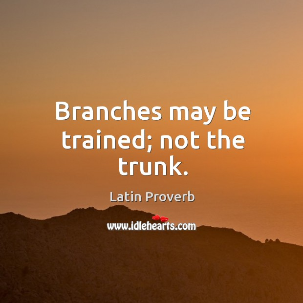 Branches may be trained; not the trunk. Latin Proverbs Image
