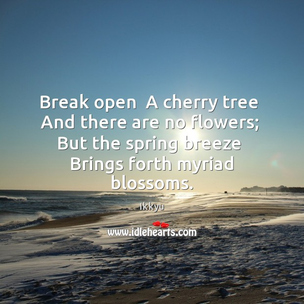 Break open  A cherry tree  And there are no flowers;  But the Image