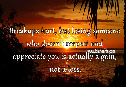 Losing someone who doesn't respect you is a gain. Hurt Quotes Image