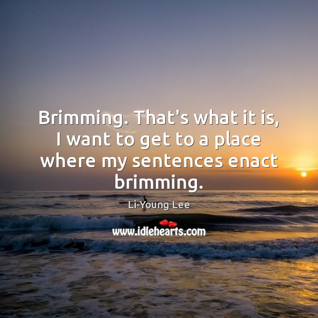 Image, Brimming. That's what it is, I want to get to a place where my sentences enact brimming.