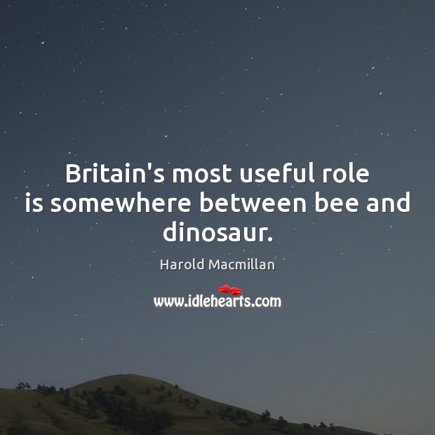 Britain's most useful role is somewhere between bee and dinosaur. Harold Macmillan Picture Quote