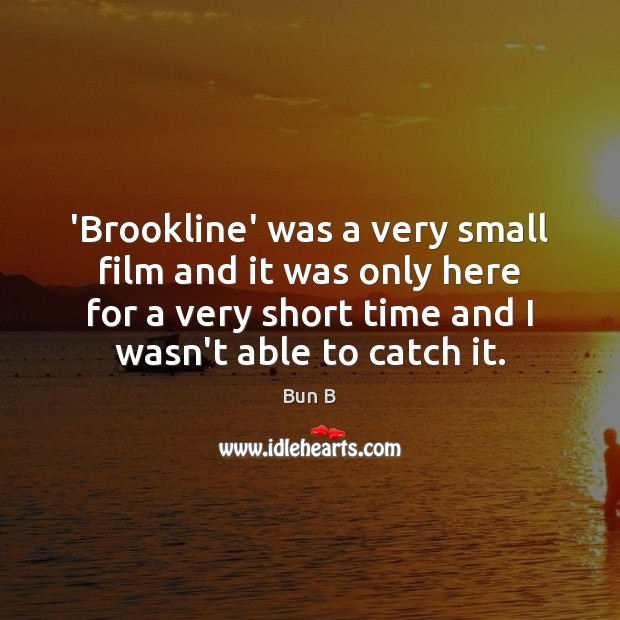 'Brookline' was a very small film and it was only here for Bun B Picture Quote