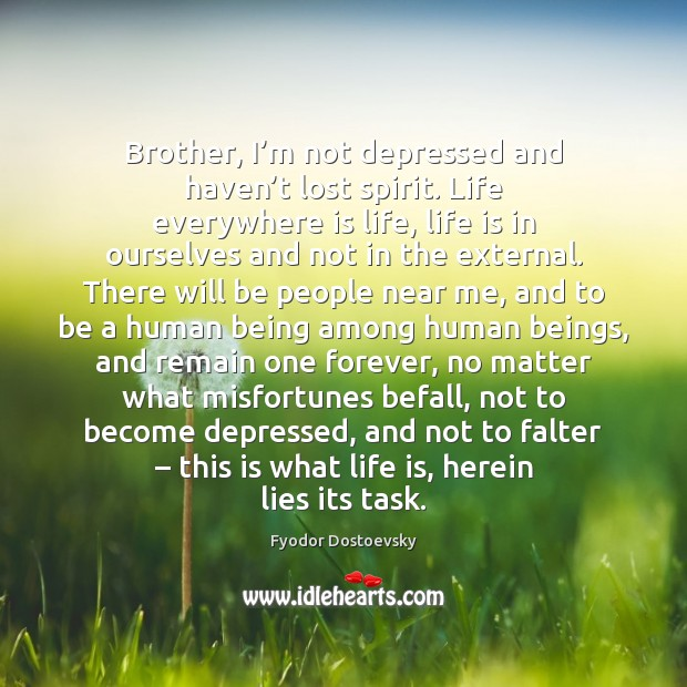 Brother, I'm not depressed and haven't lost spirit. Life everywhere Image