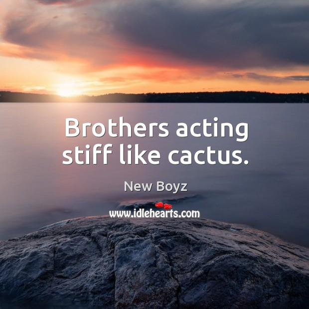 Brothers acting stiff like cactus. New Boyz Picture Quote