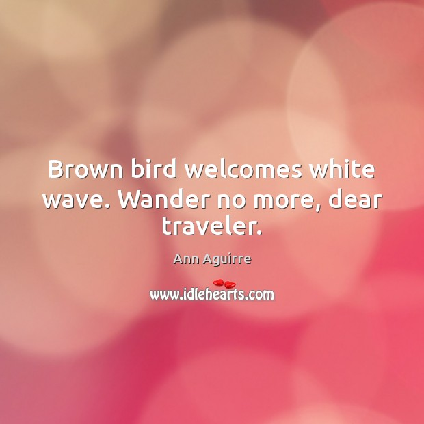 Brown bird welcomes white wave. Wander no more, dear traveler. Ann Aguirre Picture Quote
