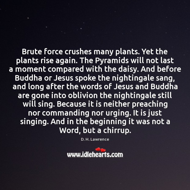 Brute force crushes many plants. Yet the plants rise again. The Pyramids D. H. Lawrence Picture Quote