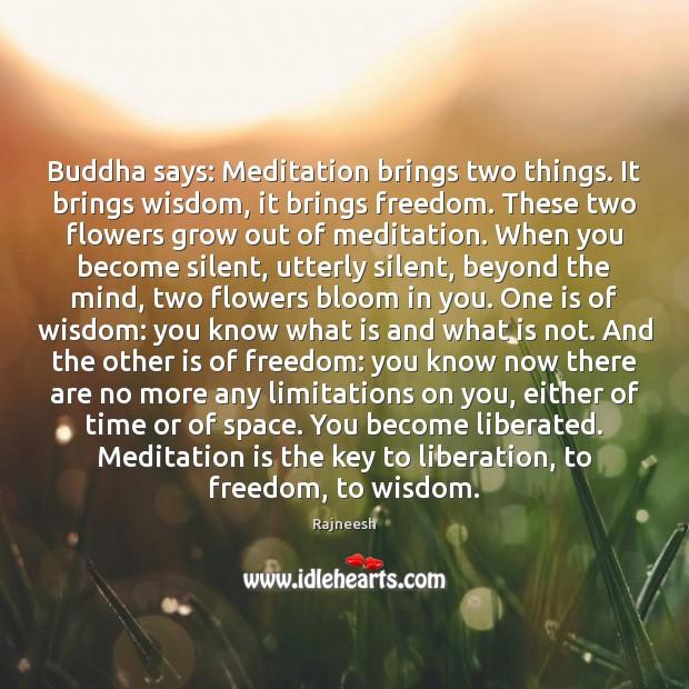 Buddha says: Meditation brings two things. It brings wisdom, it brings freedom. Image