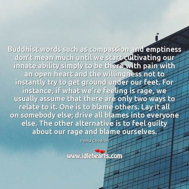 Image, Buddhist words such as compassion and emptiness don't mean much until we