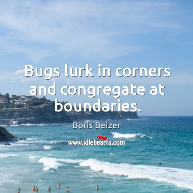 Image, Bugs lurk in corners and congregate at boundaries.