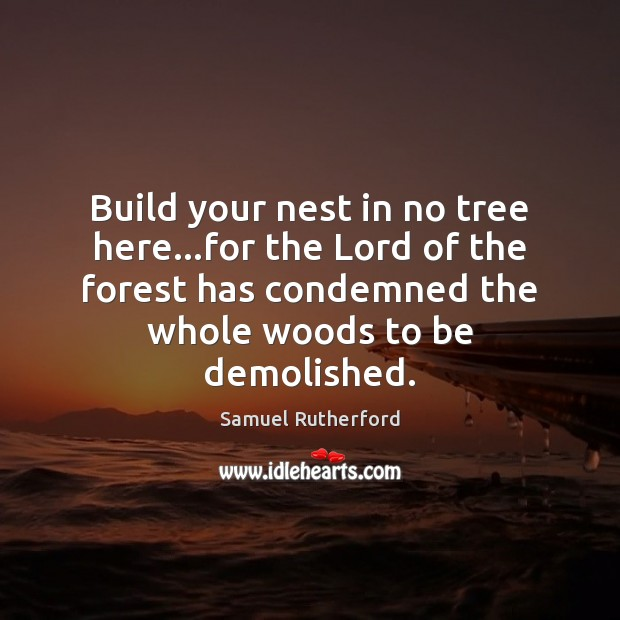 Build your nest in no tree here…for the Lord of the Image