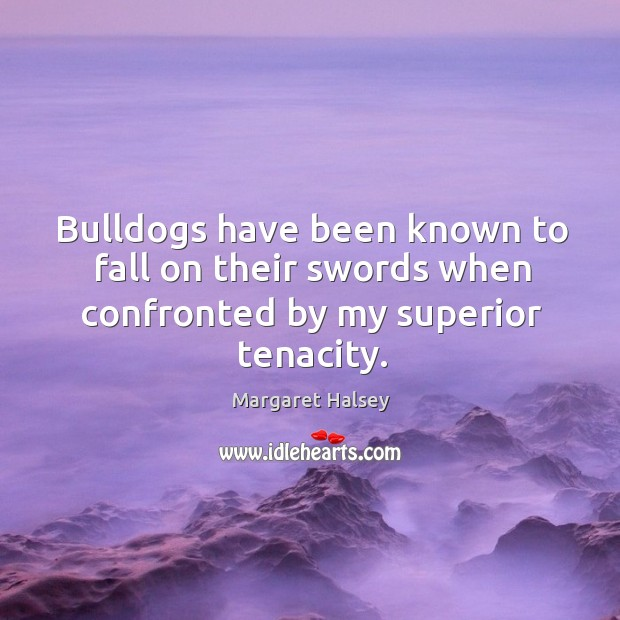 Bulldogs have been known to fall on their swords when confronted by my superior tenacity. Image