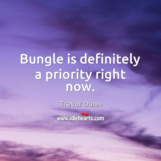 Bungle is definitely a priority right now. Priority Quotes Image