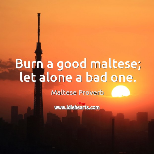 Burn a good maltese; let alone a bad one. Maltese Proverbs Image