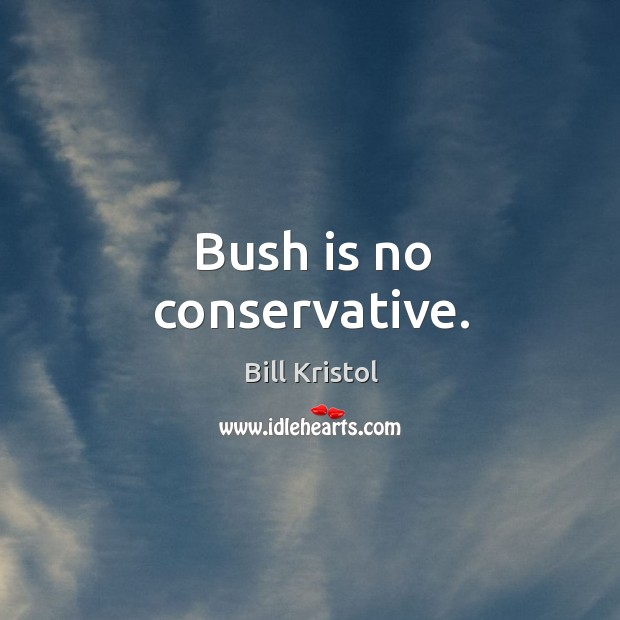 Image, Bush is no conservative.