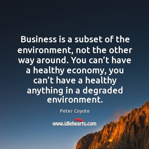 Business is a subset of the environment, not the other way around. Peter Coyote Picture Quote