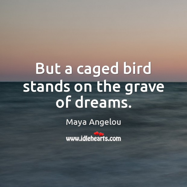 Image, But a caged bird stands on the grave of dreams.