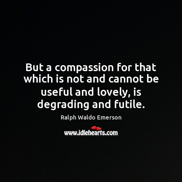 Image, But a compassion for that which is not and cannot be useful
