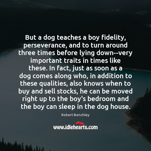 Image, But a dog teaches a boy fidelity, perseverance, and to turn around