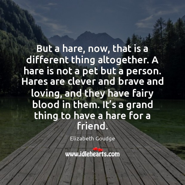 Elizabeth Goudge Picture Quote image saying: But a hare, now, that is a different thing altogether. A hare
