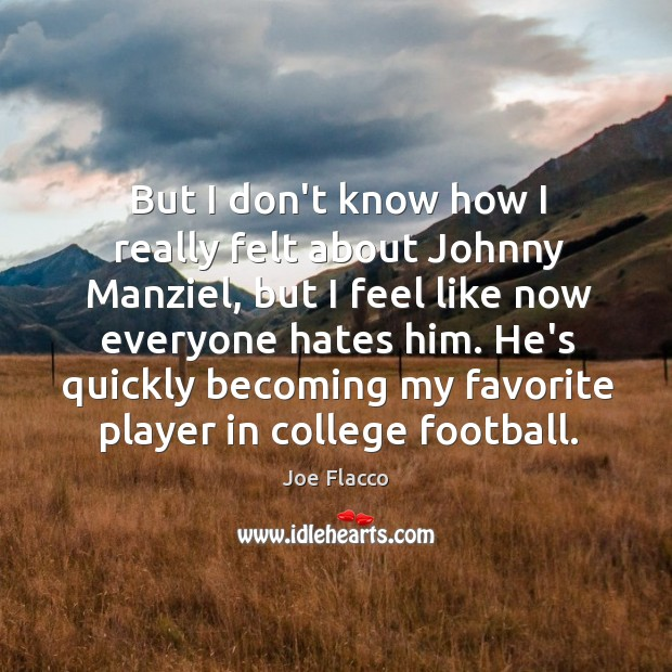 But I don't know how I really felt about Johnny Manziel, but Joe Flacco Picture Quote