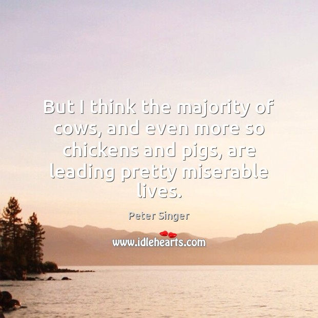 But I think the majority of cows, and even more so chickens Peter Singer Picture Quote