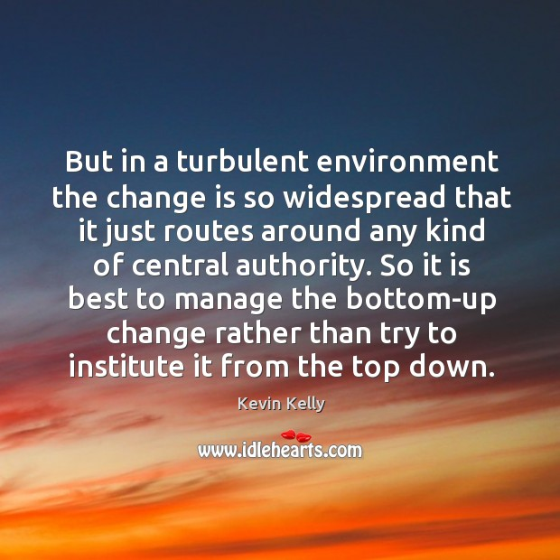 But in a turbulent environment the change is so widespread that it just routes around any kind of central authority. Kevin Kelly Picture Quote